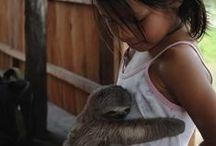 Amor humanimal.