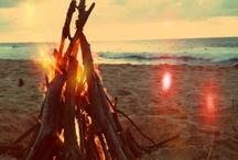 Sand & Sun / Beach, Starfish, Sand, And Sun