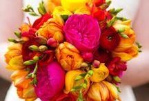natura in fiore