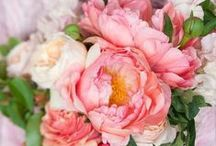 Pink Wedding Colors / Pink wedding colors and inspiration.