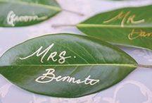 Green Wedding Colors / Green wedding colors and inspiration.