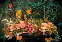 Orange Wedding Colors / Orange wedding colors and inspiration. Autumn wedding colors. Harvest wedding colors.