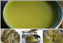 Herbalism & Natural Medicines
