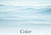 COLOR / by IPPOLITA