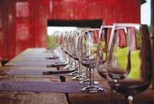 Wine Tasting Room / Around the world