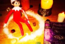 Our Elf on the Shelves / #AdultElf #christmas Follow me on Twitter and post your own #AdultElf / by Allison Alsop