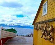 Islande / Voyage en Islande