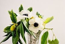 floral and event decor / by Rachel Anderson