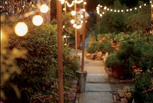 Garden / by Crystal Clemons