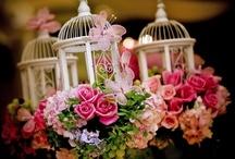 ~Bird Cages~