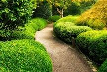 ~Garden-Pathways And Stairs~