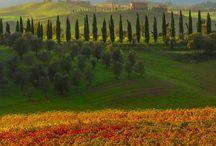 Italy & Sicily / by K. S. R.