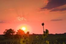 Sunrise...Sunset / by Jenny Sampson