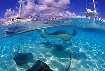 Cruise: Equinox-the Caribbean