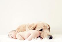 Le petit bebe / by Rebecca McKinnon