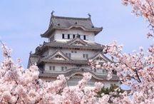 Japan / by Yuka