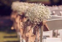 Wedding Decor / by Kylie Scott