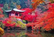 beauty of Japanese gardens and views