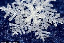 beauty of snowflakes