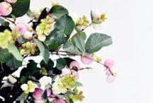 [ flower power ]