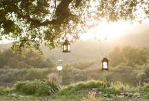 Garden ÷ GartenLeben :: living with nature / beautiful outdoor spaces, garden treasures and DIY gardening ideas