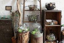 Indoor gardens~