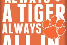 LOVE those TIGERS!!