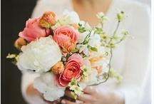 Bouquets. / by Alyssa Bollman