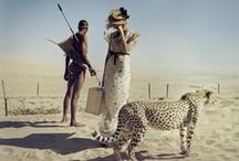 .fashion + photography. / by Kymberly Plischke