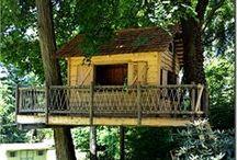 Tree Houses & Ziplines / Tree Top Builder's treehouse, zipline & swing portfolio.