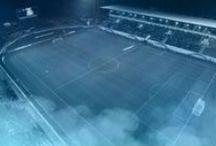 vidi / Videoton FC