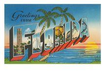 Florida / by Thea Bohmer