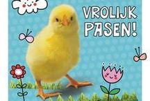 Pasen / Het voorjaar is begonnen en je ziet overal paaseieren en kuikentjes. Dat betekent dat het bijna Pasen is. Kies je paaskaart met kuikentjes, paaseieren en nog veel meer!
