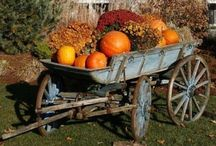 HOME:  Gorgeous Fall Decor! / Fall inspired décor. / by Dixie Dill