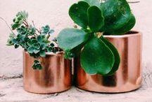 Copper / Copper feel