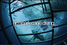 Before I Die (NOT!) -- Not on my Bucket List!  :-)