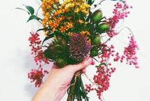 FLOWERS / Flower love