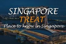 Treats of Singapore / Planning your first trip to Singapore? Singapore is a trip of treat  with cleanest, vibrant & safest places in the world. Multiple choices ti make it worth.