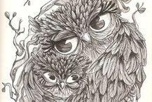 Desenho / Drawing / Ilustração