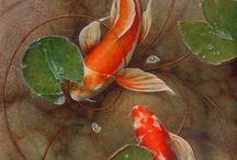 Koi Fish and Others / by Marilyn Swartz