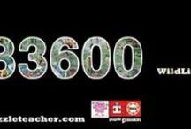 Educa Wildlife 33600 / Educa Wildlife 33600