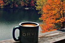 Autumn. / My favorite season, my favorite colors.