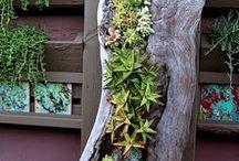 Záhradky a záhradôčky