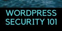 Website Security / The very basic steps related to securing a WordPress website. This is so basic, it is not even negotiable.