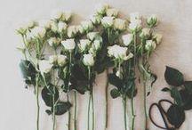 { florals }