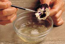 kvety candied / v ľade