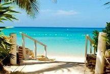 Florida / Florida, Seaside, 30a, Miami, Walt Disney World, Tampa, Florida vacation, Florida beaches