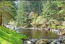 River Alness - Novar Beat 3 / Pools and salmon anglers fishing on Beat 3 of the Novar Fishings, River Alness, Scotland.
