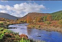 River Alness - Novar Beat 1 / Pools and salmon anglers fishing on Beat 1 of the Novar Fishings, River Alness, Scotland.