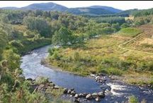 River Alness - Novar Beat 2 / Pools and salmon anglers fishing on Beat 2 of the Novar Fishings, River Alness, Scotland.
